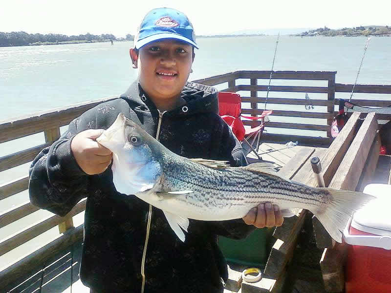 Fishing california delta chambers and visitor 39 s bureau for Delta fishing spots