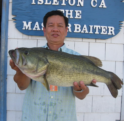California delta fishing report bass for Fishing report delta